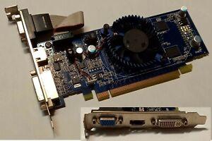 SCHEDA GRAFICA PCI EXPRESS  GF G100 512MB DDR2