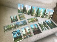 Lot of 15 Vintage Postcards Singing Tower Mountain Lake Wales 1939-1960s