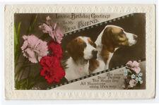 1930s British Hunting DOG BIRTHDAY tinted photo postcard