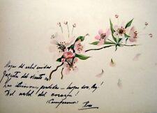 Francés Liber amicorum Apple Blossom Español. c1902