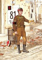 Postcard Corps of Royal Military Police, Sergeant, Holland 1944 WW2 #20-4