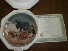Three To Boot by James Killen Labrador plate