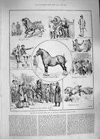 Old Antique Print 1886 Shire Horse Show Royal Agricultural Hall Islington 19th
