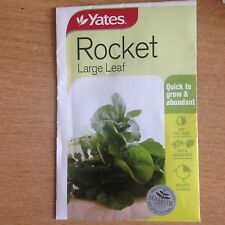2 X YATES ROCKET SEEDS (BNISP) - LARGE LEAF