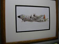 Lockheed P3 Orion  Model Airplane Box Top Art Color artist