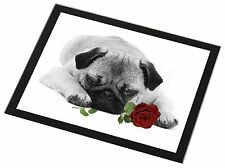 Pug (B+W Photo) with Red Rose Black Rim Glass Placemat Animal Table , AD-P92R2GP