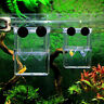 Aquarium Fish Tank Guppy Double Breeding Breeder Rearing Trap Hatchery Box E2R4
