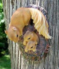 Squirrel Family Tree Knot Hugger Resin 9 in. H x 6 in. W. New Garden Decor