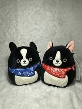 """NWT Squishmallows 5"""" Tommy & Teddy the Dogs BUNDLE"""