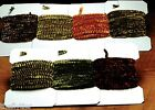 Variegated Chenille -- Fly Tying varigated for Stoneflies Streamers Nymphs lot