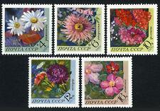 Russia 3789-3793, MNH. Flowers. Daisy, Dahlia, Phiox, Aster, Ciementis, 1970