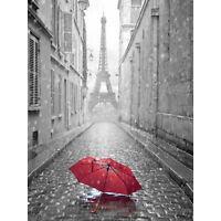 Eiffel Tower In Paris Red Umbrella Large Wall Art Print Canvas Premium Poster