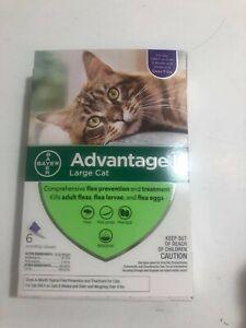 K9 Advantage II / Flea Drop Medicine for Large Cat 6 Pack K-9 6 Month Supply