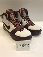 Nike Zoom LeBron VI 6 CTK Christ The King Cleveland Cavs Miami Heat Size 11.5