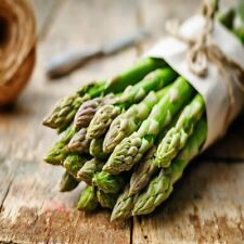 Green Asparagus Plants/roots 10 Extra Large 2nd Year Free Shipping Best Gift NEW