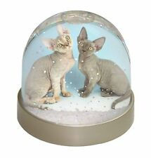 Two Devon Rex Cats Photo Snow Globe Waterball Stocking Filler Gift, AC-20GL
