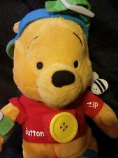 Disney Winnie the Pooh Learn and Play Plush Stuffed Toy