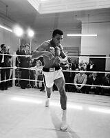 Cassius Clay MUHAMMAD ALI Glossy 8x10 Photo Print 'Boxing Training' Print Poster