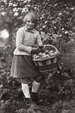Apple Harvest Recolte des Pommes Seeberger Photo 1930