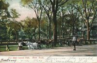 NEW YORK CITY – Central Park The Mall - 1907