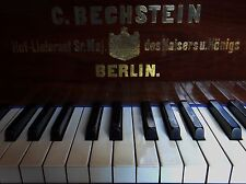 Bechstein Grand PIano 236cm ! The real one.