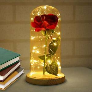 Enchanted Eternal Rose Flower In Glass LED Light Xmas Valentine's Party Decor
