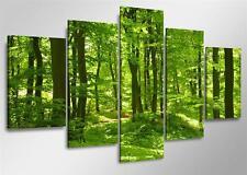 Bilder / Bild Marke Visario echte Leinwand 160x80cm XXL 5 Natur grün XXL Bild Nr