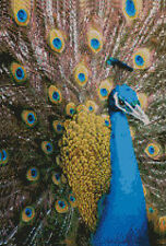"""Peacock Complete Counted Cross Stitch Kit 15"""" x 10"""""""