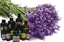 English Lavender Fragrance Aroma Oil Candle Soap Making Supplie Spa Aromatherapy