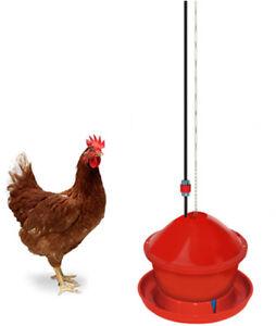 Abbeveratoio per polli galline automatico Novital, con filtro e catena