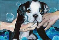 13x19 BOSTON TERRIER PUPPY BATH Dog Art PRINT of Original Oil Painting by VERN