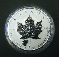 2017 Canada $5 1oz Cougar Privy Mark Silver Maple Leaf coin Wild life series