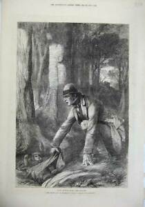 Original Old Antique Print 1874 Man Woods Crying Baby Trees Country Proctor