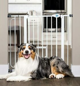 Carlson Extra Wide Walk Through Pet Gate with Small Pet Door 930 PW DS