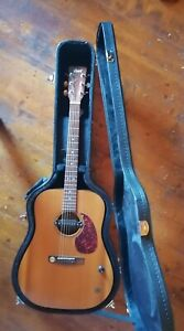 CORT elektro-akustische Western-Gitarre im Koffer, modifiziert + Gurt + Kapo