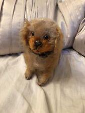 Antique German Steiff? Golden Mohair Spaniel Dog Mohair Toy Glass Eyes Doll Pet