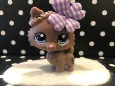 AUTHENTIC ORIGINAL LITTLEST PET SHOP # 2249 CHOCOLATE BROWN POMERANIAN DOG