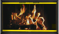 Polished Brass and Black Fireplace Glass Doors for Temco (Tempco) fireplace TE56