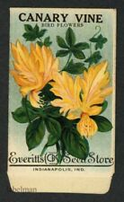 Canary Vine, Everitt's Antique Seed Packet, Kitchen Decor, 038