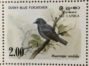 SPECIAL LOT Sri Lanka 1983 693 - Birds of Ceylon - Full Sheet of 100 - MNH