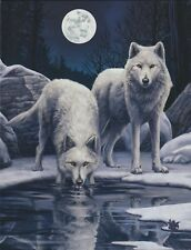NEW Wolf Picture Winter Warrior by Lisa Parker 25 cm x 19 cm Wall Plaque