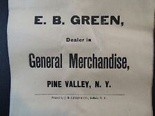 RARE - Advertising Paper Bag - ca 1890 Green - General Store - Pine Valley NY