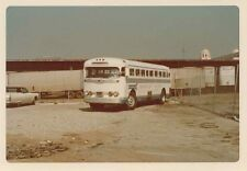 N930 RP 1970s? AMERICAN PACIFIC BUS NEVADA ? CALIFORNIA ?