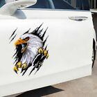 Car Body Decoration 3d Simulation Sticker Motorcycle Decal Eagle Car Sticker