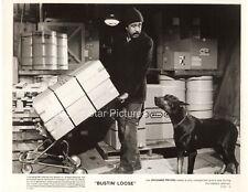 A77 Doberman Pinscher in Bustin Loose 1981 Movie Still