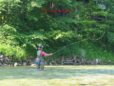 Fly Fishing Guide Angling Trolling Trout Salmon 15 Books on DVD