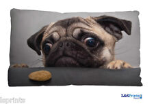 CUTE PUG BISCUIT DESIGN SMALL CUSHION IDEAL GIFT CAR TRAVEL ACCESSORY