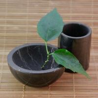 Shungite bowl and shungite shotglass utensil from healing stone Tolvu only real