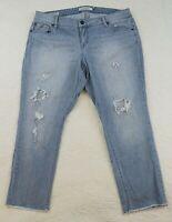 Rare Torrid Jeans Size 18 Boyfriend Crop Raw Hem Ankle Distress Peakaboo Netting