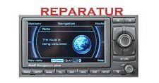Audi Seat RNS-E RNS Navigation Display Reparatur Schwarz & Weiß